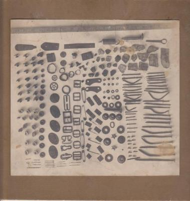 Photograph, Contents of a Man's Stomach