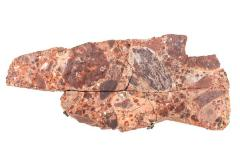 Copper in Conglomerate