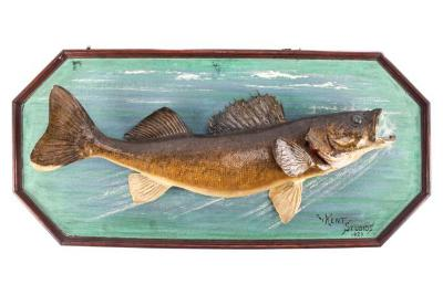 Walleye (Mount)