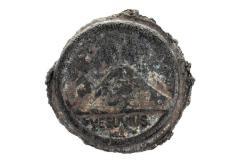 Lava Medallion