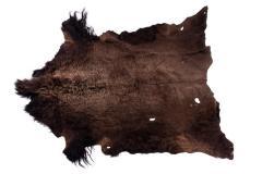 Buffalo Robe