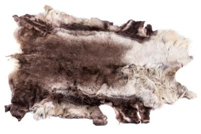 Caribou (hide)