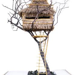 Model, African Tree House
