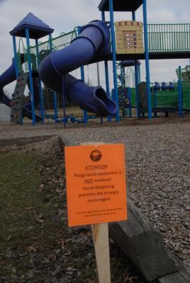 Digital Photograph, Pinewood Park