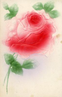 Postcard, Pink Rose On One Side