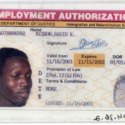 Employment Authorization Card David Bishow, Sudanese Immigration Archival Collection #137