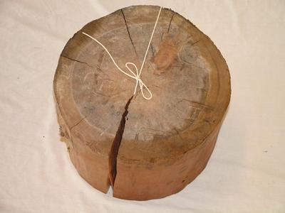 Log Section, Pine