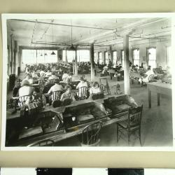 Photograph, Steel Furniture Company, Office Scene in the Stenographic Department