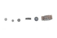 Crinoid Pieces (6 Specimens)