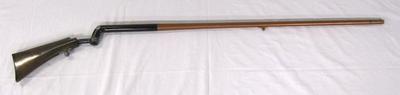 Cane Gun