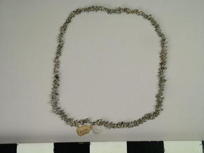 Necklace, Shell