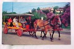 Postcard, Lilac Time, Mackinac Island
