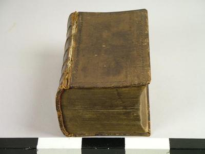 Bible, Old And New Testaments