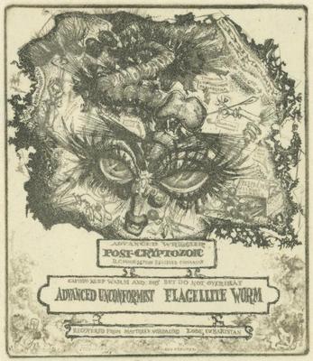 Print, 'Fossil Studies: II, Invertebrate - State I' (1 Of 3)