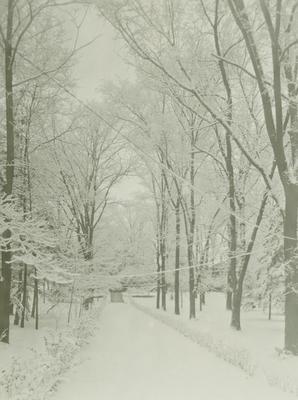 Photograph,snowed Walkway