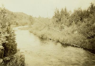 Photograph, River In Woods