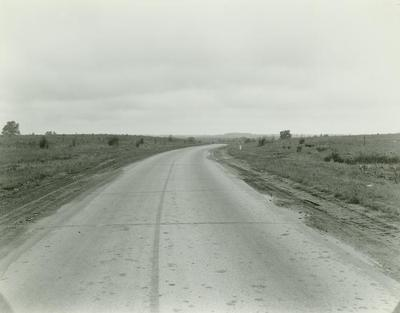 Photograph, Road With Curve Sign