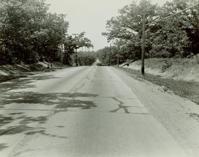 Photograph, Car In Road