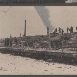Photograph, Flint and Pere Marquette Railroad, Logging in Michigan