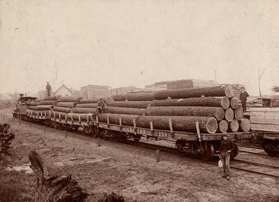 Photograph, Logs On Train