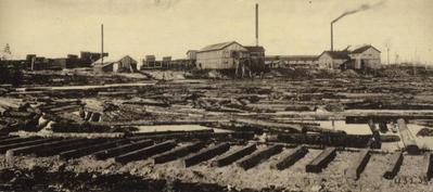 Photograph, Logs on a Riverbank at Michigan Saw Mill