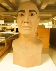 Facial Reconstruction Of Mummy Skull, Male