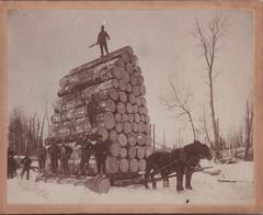 Photograph, Tall Stack of Logs on Horse Drawn Sleigh