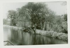 Photograph, East Bank of Canal, October 14, 1943