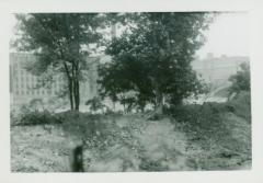 Photograph, East Bank of Canal, October 2, 1943