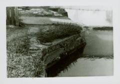 Photograph, Star Mill North Flume
