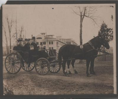 Photograph, Horse and Buggy