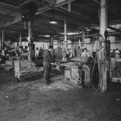 Photograph, Men and Women Operating Table Saws