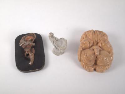 Brain Models (3 Of 5)