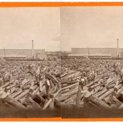 Photograph, Logs in Grand River