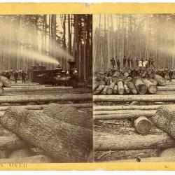 Stereoview, Logging Train Near Stanton, Michigan