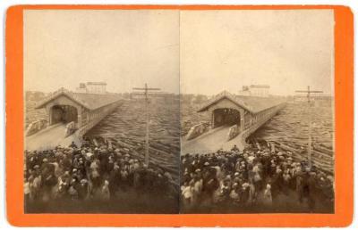Stereoview, Grand River Log Jam at Covered Pearl Street Bridge