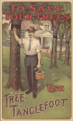 Poster, Reproduction, 'to Save Your Trees, Use Tree Tanglefoot'