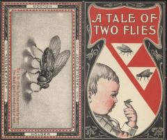 Booklet, 'a Tale Of Two Flies'